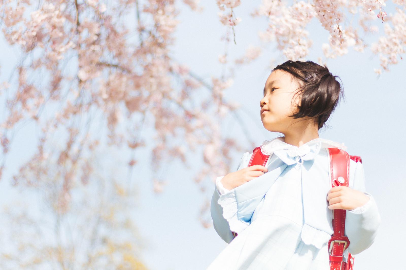 卯月は何月?意味/読み方/由来は?4月の時候の挨拶と季語も紹介!
