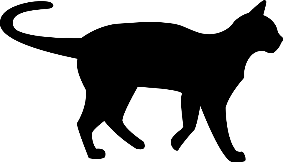 モノクロの意味とは?白黒/グレースケール/モノトーン/セピアとの違いは?